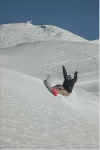 Nico Palladio surfy