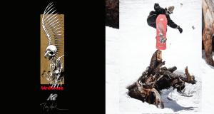 K2 Snowboarding x Tony Hawk x Birdhouse